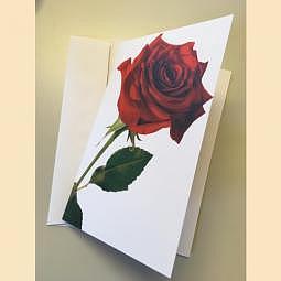 Karte Rote Rose