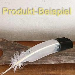 Feder Truthahn gefärbt - Räucherfeder